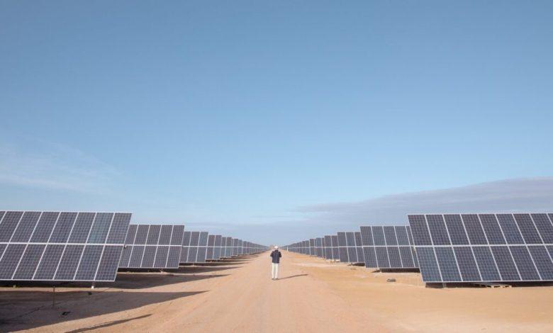 LONGi fortalece su presencia en México con planta de energía fotovoltaica Pachamama de 191 MW 1