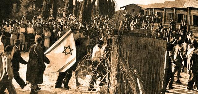 Jewish Refugees in Palestine