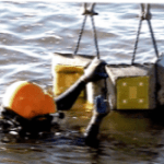 Diver Setting Mats in shallow water