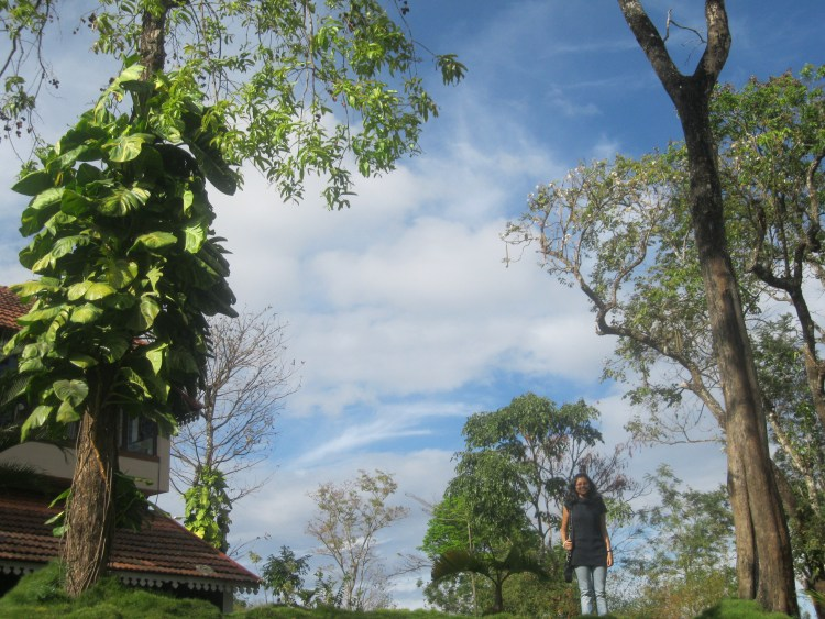 ADMIRING THE CLOUDS BELOW – IN COORG