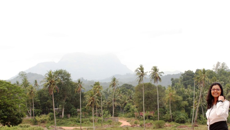 Sri Lanka is almost synonymous with palm trees