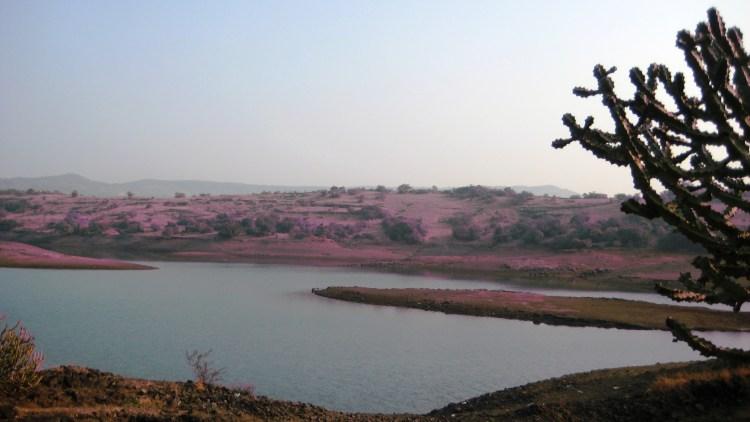 We left Tungarli Lake just as we found it