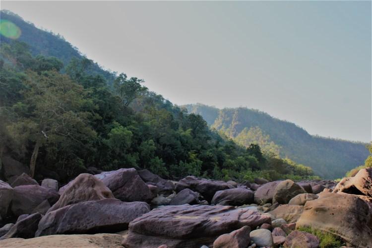 The enchanting wilderness of Satpura