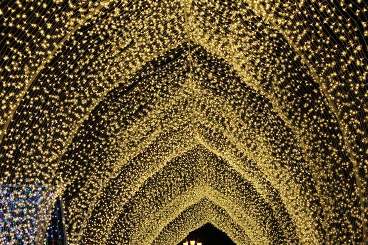 Roof of lights