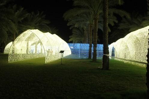 Fairy lights in a garden