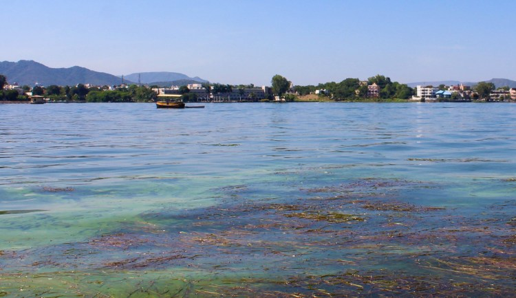 Lake Fatehsagar in Udaipur entices me to linger here a little longer.