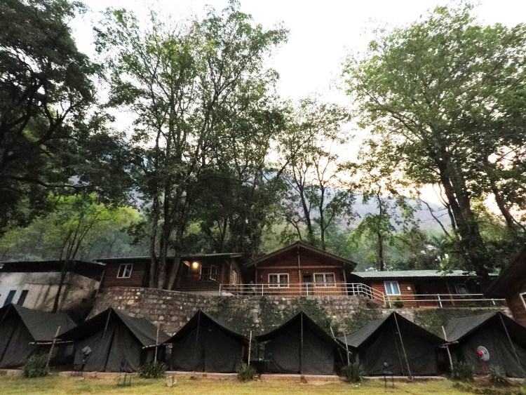 Tents and wooden rest houses in Kaudiyala