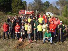 Bombeiros plantam primeiras árvores