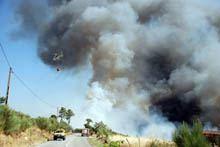 Mais de 3 mil hectares ardidos no início de         outubro