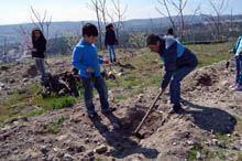 Mais de mil crianças e jovens participaram         na Semana da Primavera Biológica