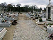 Cadáver estava enterrado há 44 anos