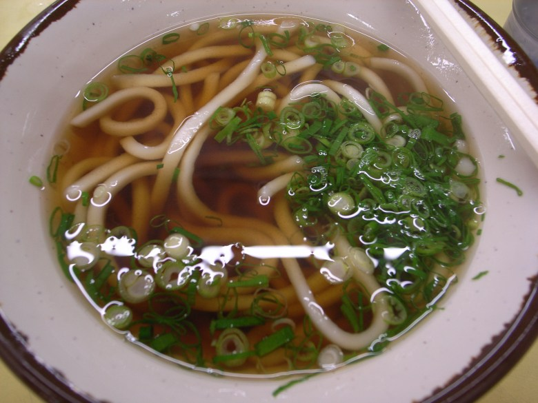 Photo Description: a white bowl with a black fringe edge. Udon noodles are in dashi with sliced green onions.