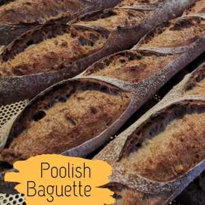 Poolish Baguette (1)