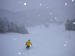 新雪深雪レグルス