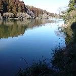 雄蛇ヶ池ポイントガイド(2)松田谷津
