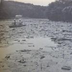 雄蛇ヶ池は沈黙した。あるバスポンドの誕生とその一生の報告/1970年代の雄蛇ヶ池