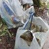 雄蛇ヶ池クリーンアップ大作戦2015。一斉草刈り&ゴミ拾い