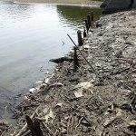 雄蛇ヶ池9/3マイナス150cmの大減水