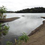 雄蛇ヶ池9/7大幅減水しマイナス110cm、デカ羽根モノとバイブで2本