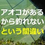 バス釣りにアオコがどう影響するか?様々な状態があるアオコ★見極めが重要