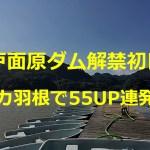 戸面原ダム★バス釣りボート解禁日にビッグクローラーベイトで55UP連打