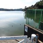 雄蛇ヶ池11/2の状況。水位マイナス30で放水継続中、濁りあり