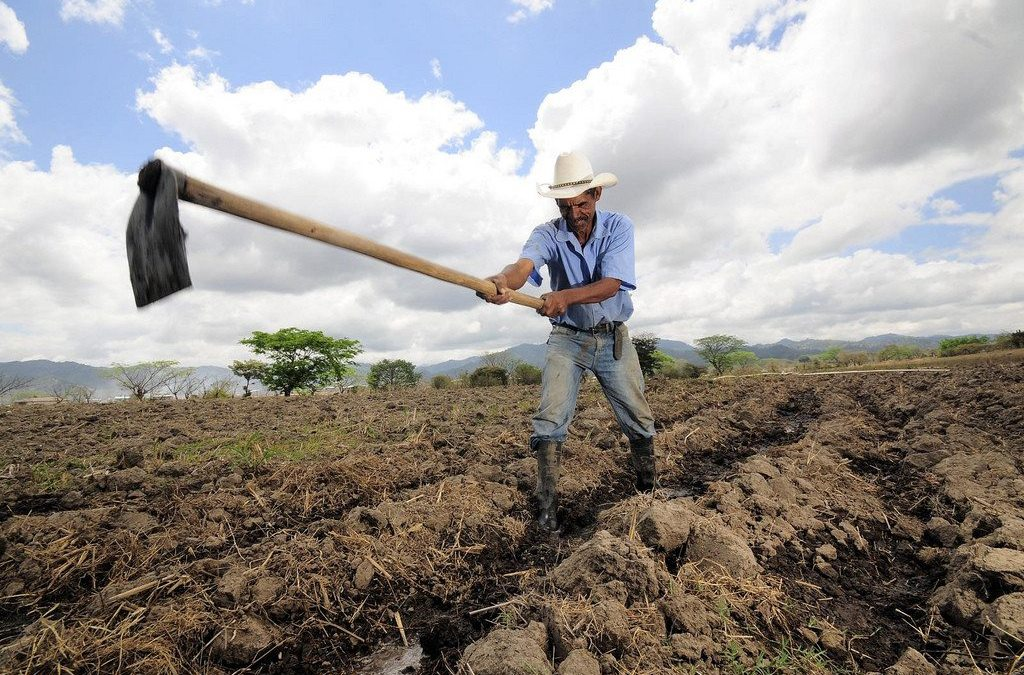América Central busca $400 millones para blindar sus zonas más áridas del cambio climático