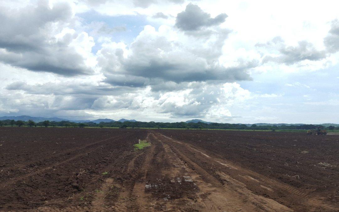 Guanacaste abre preguntas sobre su futuro en un planeta más caliente