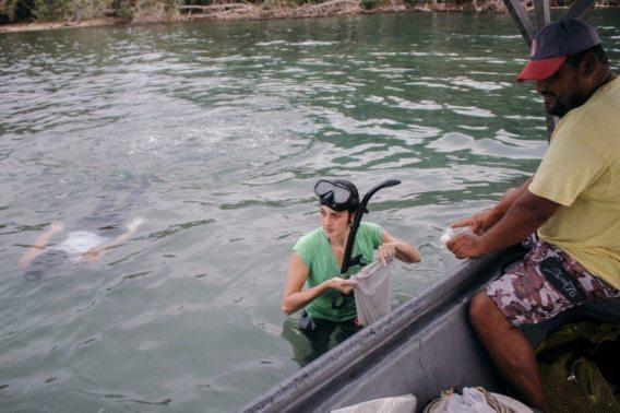 La estudiante de Biología, Mariana Cullel, y el químico Juan Sagot recolectan pastos y sedimentos en una pradera del Parque Nacional Cahuita, en Limón.