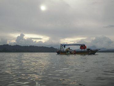 Se calcula que hay de 60 a 72 especies de pastos marinos en el mundo. En Costa Rica, se estima que hay siete especies.