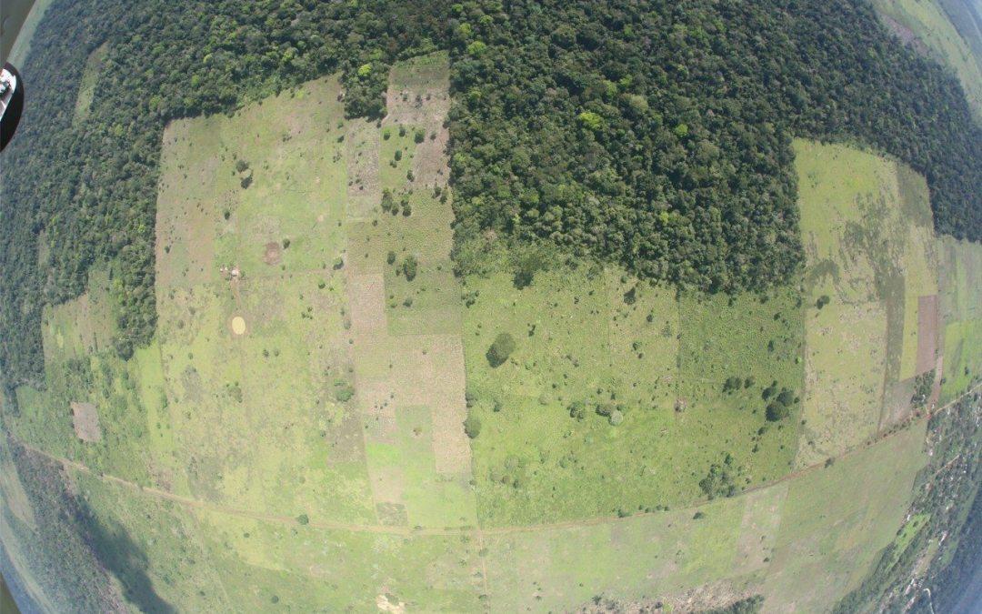 Narco golpea escudos forestales contra desastres en Centroamérica