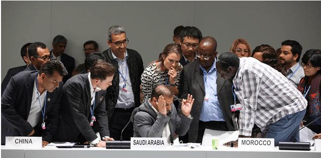 """COP25: la """"cumbre de la ambición"""" dejó un panorama gris para el 2020"""