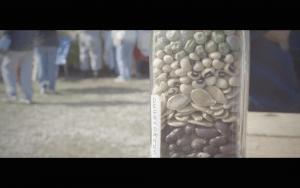 semillas, ¿bien común? 3