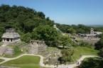 Crazy palenque