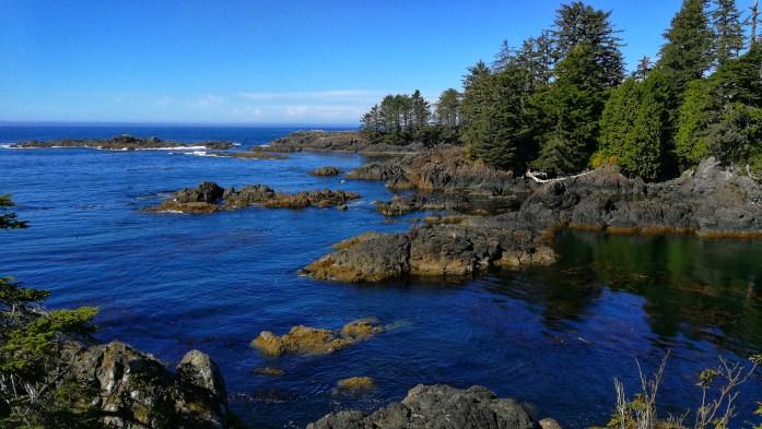 Meeresbucht mit Steinen und Bäumen in Ucluelet auf Vancouver Island