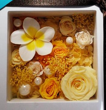 プルメリア フレーム ハワイ hawaii 花言葉 由来 ブリザーブドフラワー ベルフルール 銀座 伊勢丹 イエロー 黄色