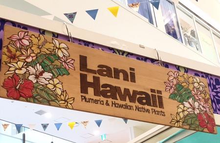大阪 梅田 阪急 百貨店 ハワイアンフェア 2017 ラニハワイ