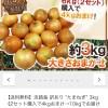 Wowma!の500円OFFクーポンや期間限定ポイントなどを使って、たまねぎ3㎏を141円で買いました!