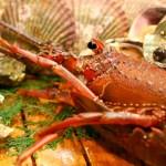 伊勢志摩グルメの名物は?海鮮やプリップリの伊勢海老でおすすめの人気店をご紹介
