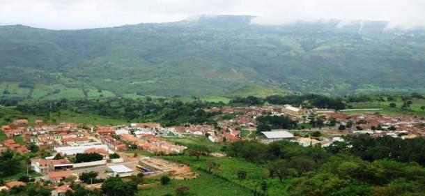 jamacaru