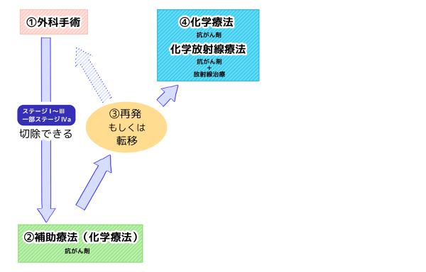 膵臓がん治療の流れ チャート図 ③再発