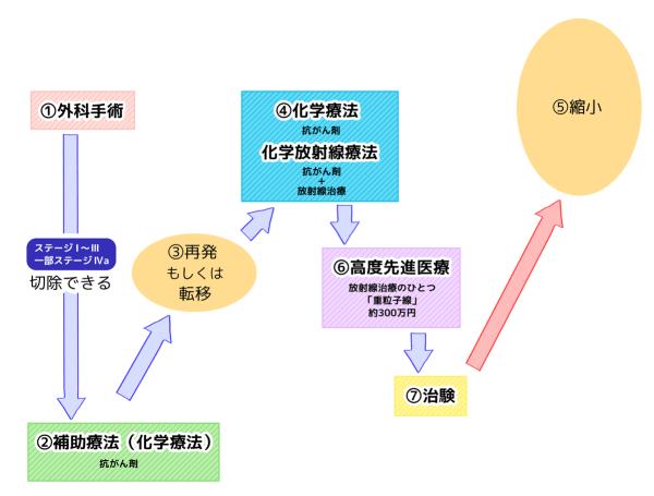 膵臓がん治療の流れ チャート図 ⑦治験