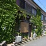 大川無垢家具の専門店 近藤家具