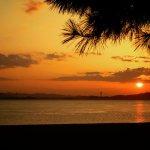 【玉野が1位】県内観光客 21%減1331万人 20年調査、外出自粛や休業響く