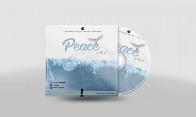 Peace By Vic J
