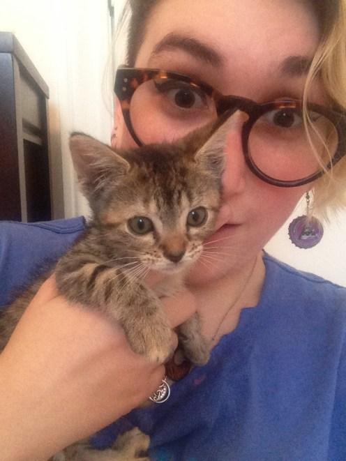 Little tiny kitten, Bella