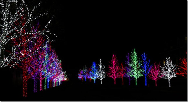 Oklahoma City Christmas 2010