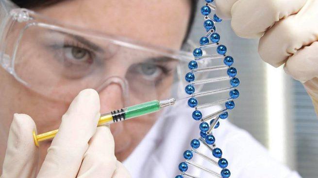 Resultado de imagen para Predicciones genéticas