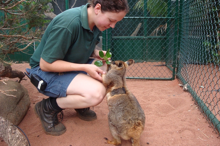 Renee with a Rock Wallaby