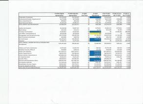 MF Budget 4